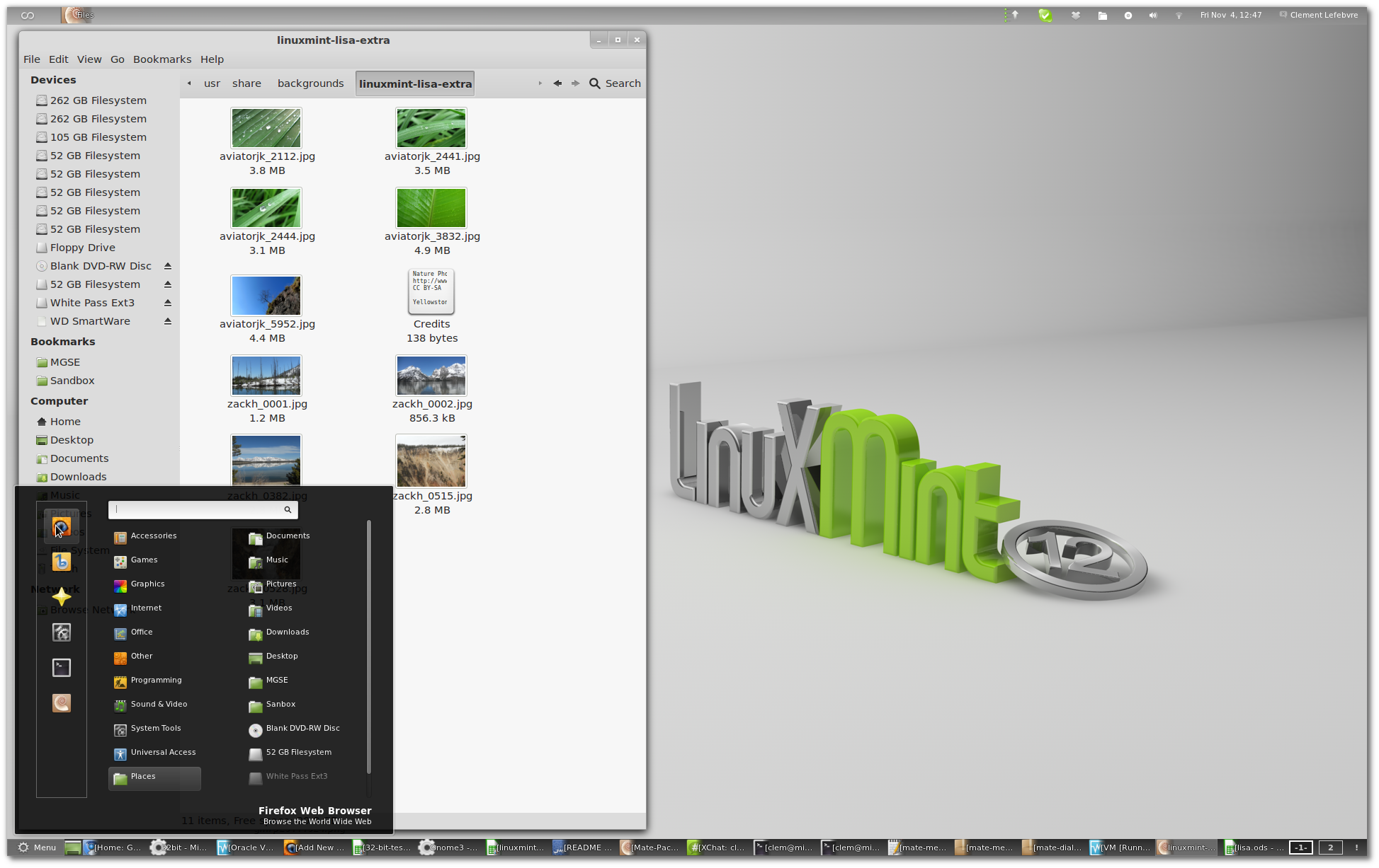 Linux Mint 11 for digital painting - David Revoy